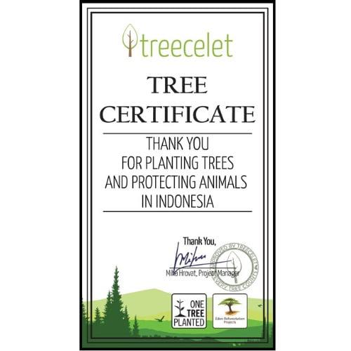 Indonesia Certificate