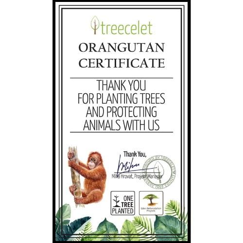 Orangutan Certificate
